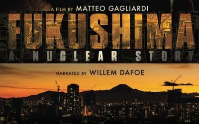 Fukushima : a nuclear story
